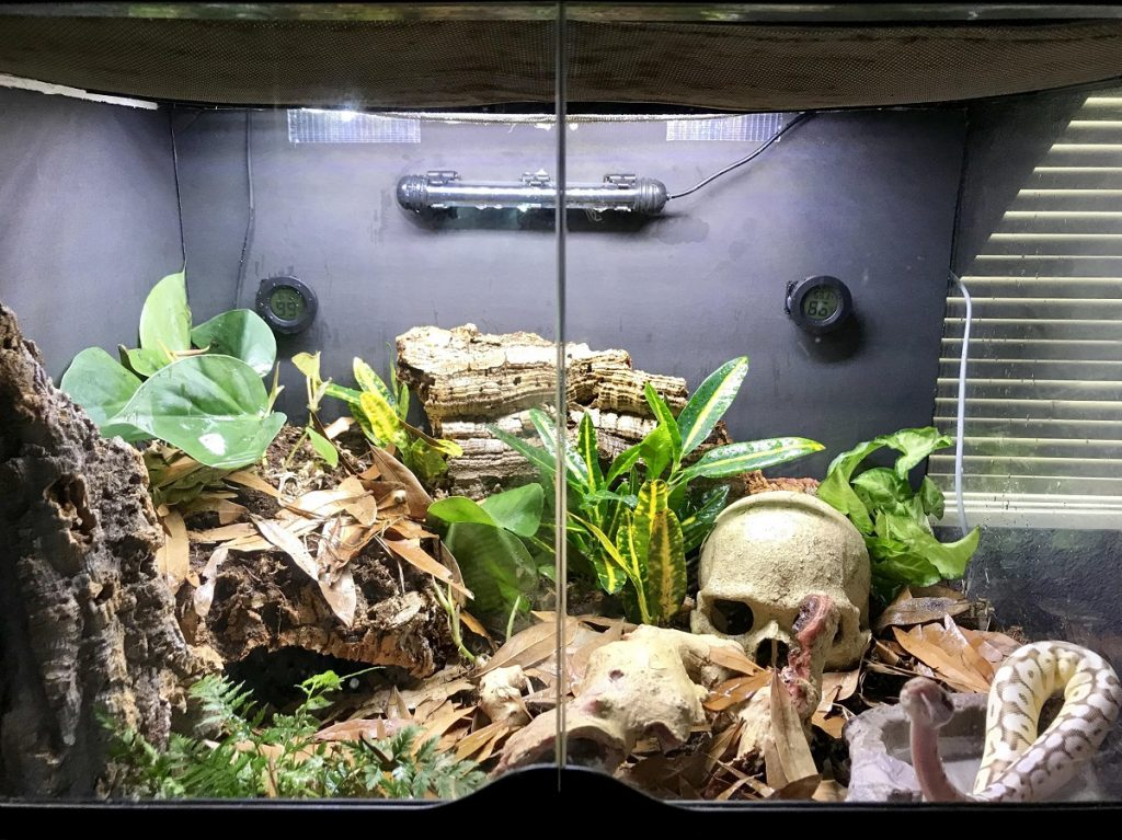 how to increase heat in ball python tank